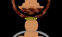 Portable Coffee Polarizer