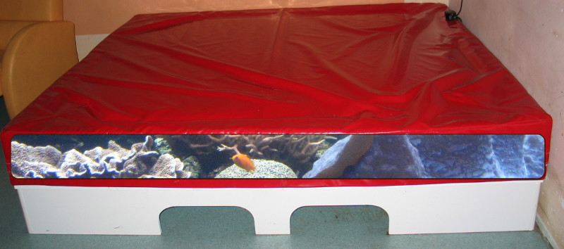 Aquarium waterbed the flying news for Waterbed with fish