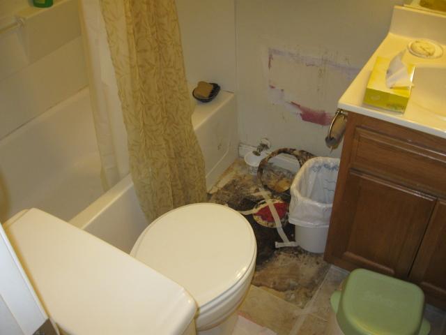 A strange toilet situation.