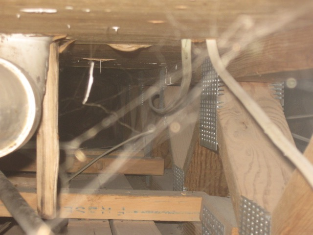 Internals of a house, showing floor truss, drain pipe, and spider webs.