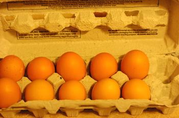 10 eggs in a carton