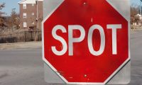 Stop sign that reads SPOT.