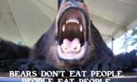 Bears don't eat people. People eat people.